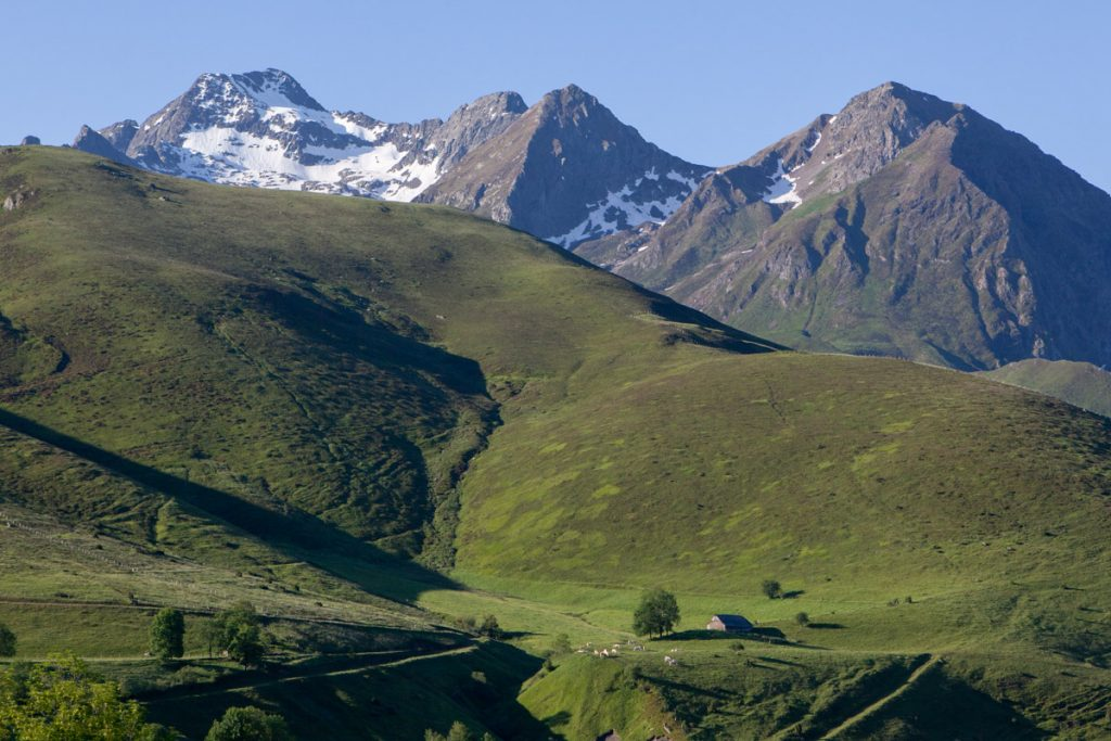 Sejours nature Pyrenees faune flore vallee du Louron